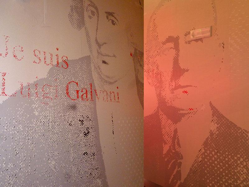 stampe-murali-sushiko-bologna-galvani